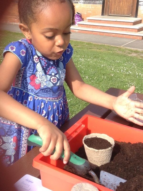 Planting seeds outside preschool